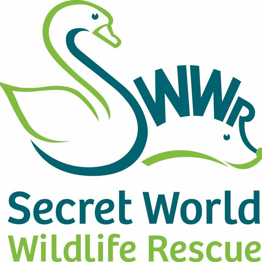 SecretWorldWildlifeRescue